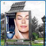 Étalage d'écran polychrome extérieur de l'intense luminosité DEL pour la publicité