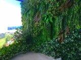 Piante di alta qualità e fiori artificiali del giardino verticale Gu20170223150728