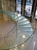 Gebogener Glastreppenhaus-Treppenhaus-Entwurf/modernes Treppenhaus
