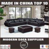 Europa-Art-Möbel-Sofa mit reinem Leder (LZ-883)