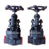 800lb/1500lb/2500lb a modifié le robinet d'arrêt sphérique en acier de l'extrémité d'amorçage A105 TNP