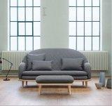 Tela moderna Sofa-Hc090 de la sala de estar de los muebles caseros