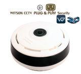 الدوائر التلفزيونية المغلقة الكاميرا 1.3 ميغا بكسل 3D VR فيش لاسلكي واي فاي الملكية الفكرية كاميرا 360 درجة بانورامية الأمن