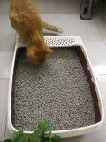Carbono ativo de bambu da maca de gato do Tofu
