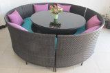 Tableau Furniture-49 extérieur de rotin de loisirs