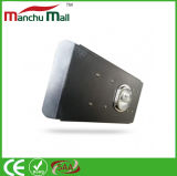 150W LED Outdoor Ultralight Separate Light Body met PCI Heat Conduction Material