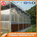 Serre chaude en aluminium de feuille de polycarbonate de profil de bâti en acier d'agriculture pour le légume
