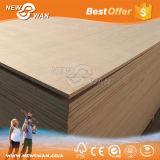madeira compensada comercial de 18mm (Okoume, Bintangor, Sapeli, Teak, ect)