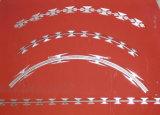 방호벽을%s 높은 장력 직류 전기를 통한 예리한 면도칼 가시철사
