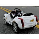 Elektrisch Reiten-auf Spielzeug Auto-Weißes Tl-5288 (zwei Batterie der Kinder des Motor zwei)