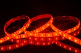 Tira do diodo emissor de luz da cor vermelha do bobina impermeabile/Striscia 300LEDs SMD 5050 do adesiva do rossa IP65 auto