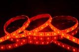 IP65 rossa 자동 adesiva bobina impermeabile/Striscia 300LEDs SMD 5050 빨간색 LED 지구