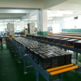 AGM Batterij de van uitstekende kwaliteit 12V 100ah