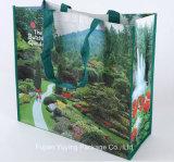 Sacchetto di acquisto non tessuto laminato, sacchetto di Tote