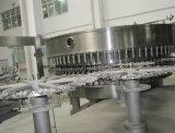 Das Haustier-Flaschen-Trinkwasser beenden, das Produktionszweig von a zu Z bildet