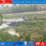 Barco de la colección del jacinto de agua de Qingzhou