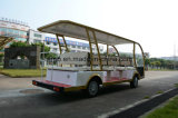 Багги колес тавра 4 Rariro электрическое Sightseeing