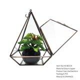 De transparante Geometrische Bloem van Terrariumfor van het Glas