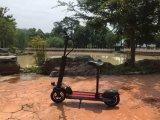 10インチのタイヤが付いている400W合金の電気スクーター