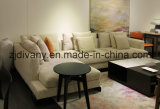 Sofá moderno del cuero de la tela del sofá del hotel del estilo (D-75-F+E)