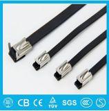 Serre-câble enduit d'acier inoxydable de blocage de bille de PVC