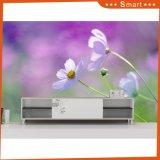 Горячими подгонянная сбываниями картина маслом конструкции 3D цветка для домашнего No модели украшения: Hx-5-059