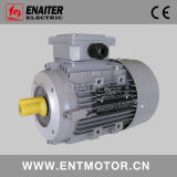 Alu, das elektrischen Motor für allgemeinen Gebrauch Ie1 unterbringt