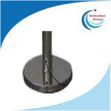 De Elektrostatische Eliminator van het menselijke Lichaam/wat betreft Elektrostatische Eliminator