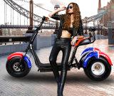 3つの車輪の電気三輪車のスクーター