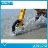 Vespa plegable de la bici del barco de España del yate de la bici marina de la playa