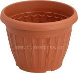 円形のテラコッタ植木鉢