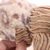Kauen-Haustier-Spielwaren ziehen Welpen-Hundequietschen-Spielwaren an