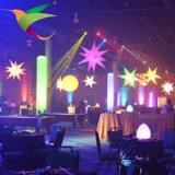 Aufblasbare Dekoration-aufblasbare Straßenbeleuchtung des Ballon-Iflt-17021320