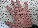 경쟁가격 PVC 동물성 감금소를 위한 입히는 6각형 철사 그물세공