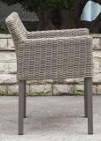 Самомоднейший напольный ротанг/Wicker стул (LN-2000W)