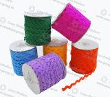 Gli accessori di cucito zigzagano nastro del merletto