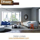 Conveninetおよびはっきりした移動式現代居間のソファーデザイン
