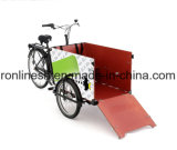 Pedal o 250With500W cargo eléctrico Trike/bici del cargo E/bicicleta del cargo de la rueda del cargo Tricycle/3 de la familia/transporte Trike/bicicleta del cargo del mensajero, nexo 3speed