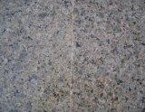 La Cina Brown tropicale Granite Tiles per Outside Wall Cladding