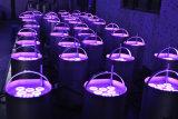 Indicatore luminoso a pile senza fili di PARITÀ della fase LED di Uplight della lavata di telecomando RGBW