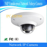 Cámara a prueba de vandalismo llena de Fisheye de la red de Dahua 5MP HD (IPC-EB5500)