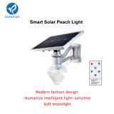 indicatore luminoso solare del giardino di 6W 50000hours 600-720lm Bridgelux LED