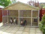 Большие псарня собаки/псарни собаки Lowes и бега/дешево дом собаки