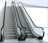 屋外のFactory Price 1000mm Step 35 Degree Escalator
