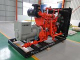 300kw Syngas Gas-Generator