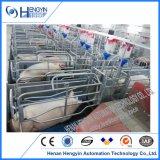 돼지는 판매를 위해 돼지 새끼를 낳는 펜 암퇘지 새끼를 낳는 크레이트 마루를 실속시킨다