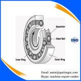 Rodamiento de bolitas autoalineador del acerocromo del rodamiento de bolitas de la alta precisión Gcr15 (2200)
