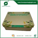 주문 Fruit 및 Vegetable Carton Box
