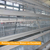 Тип гальванизировал автоматическую цыплятину пользы цыпленка держа машину для слоя