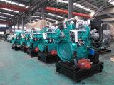 Motor diesel de Ricardo para el conjunto de generador diesel